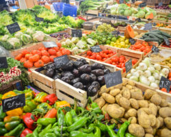 healthy foods to bounce back from holiday food