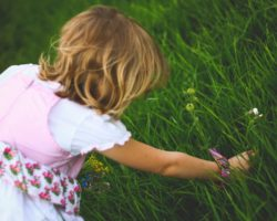 A Nanny's Guide to 7 Common Summer Ailments